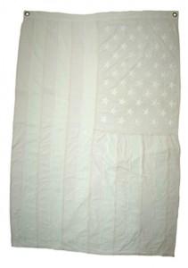 http://wp12222508.server-he.ch/files/gimgs/th-181_181_white-flag--bleached-flag.jpg
