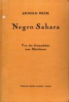 http://wp12222508.server-he.ch/files/gimgs/th-46_46_negro-sahara-b.jpg